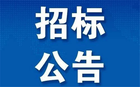 中广核3个核电项目工程监理(重新招标)招标公告,涉及广东太平岭核电