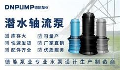 以创新为指引,以技术为突破,德能泵业抢抓机遇打造优质潜水轴流泵