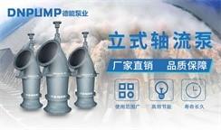 助力环保攻坚,打造优秀品牌,德能泵业立式轴流泵勇立潮头